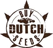 Buy Dutch Seeds