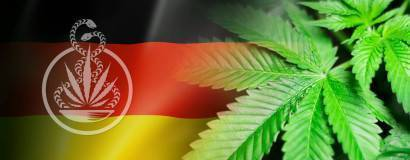 Bundesweit erstes Cannabis-Therapiezentrum in München geplant